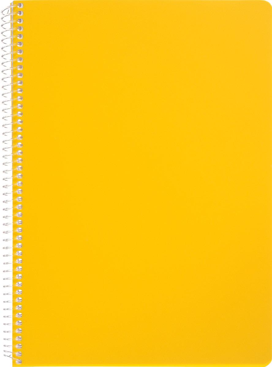 Faber-Castell Блокнот Since 1761 100 листов без разметки цвет желтый507039_желтыйОригинальный блокнот Faber-Castell Since 1761 в твердой пластиковой обложке подойдет для памятных записей, любимых стихов и многого другого.Блок состоит из 100 листов без разметки. Блокнот изготовлен со спиралью. Такой блокнот станет не только достойным аксессуаром среди ваших канцелярских принадлежностей, но и практичным подарком для в близких и друзей.