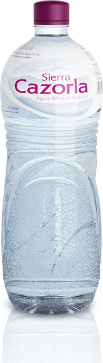 Sierra Cazorla вода минеральная, 1 л8429821120025Sierra Cazorla - источник, находящийся на территории одноименного Биосферного Заповедника на юге Испании. Благодаря расположению в экологически чистом районе, далеком от промышленности и городской инфраструктуры, минеральная вода Sierra Cazorla выделяется на фоне остальных своим безупречным качеством и абсолютной чистотой. Вода Sierra Cazorla прекрасно утоляет жажду, подходит для диетического и детского питания. Она насыщена кальцием, магнием и гидрокарбонатами, поэтому хорошо восстанавливает водно-солевой баланс в организме.