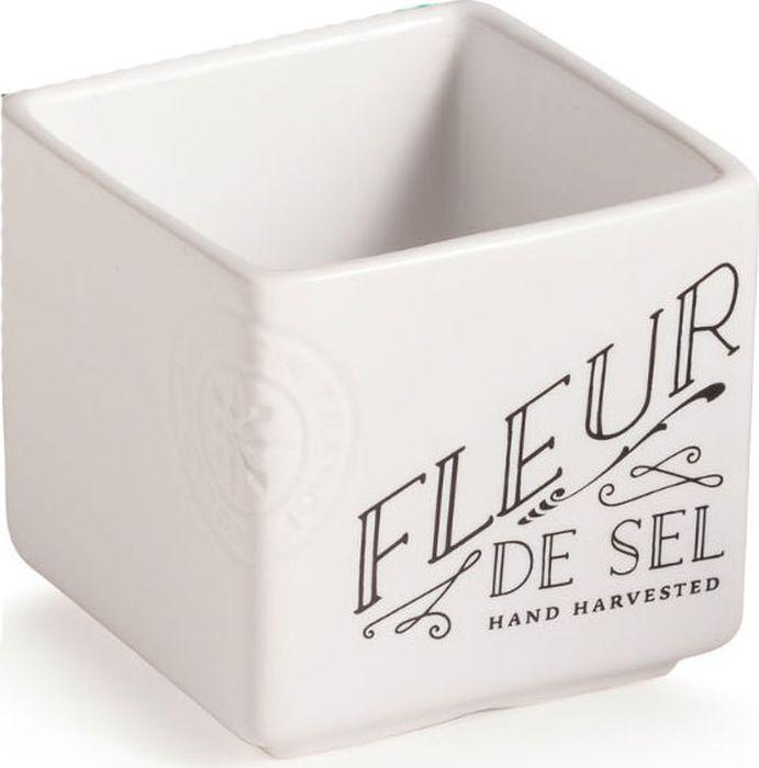 Емкость для соли Rosanna Salt Cellar, цвет: белый95240Емкость для соли Rosanna Salt Cellar, изготовленная из качественного фарфора, она подчеркнет ваш вкус в окружающих вещах. Коллекция Salt Cellar предназначена для создания у вас праздничного настроения каждый день. Необычный дизайн емкости, будет изюминкой в интерьере современной кухни.Не рекомендуется использовать в микроволновой печи во избежание появления трещин.