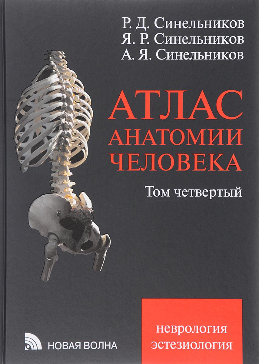 Атлас анатомии человека. Учебное пособие. В 4 томах. Том 4. Учение о нервной системе и органах чувств