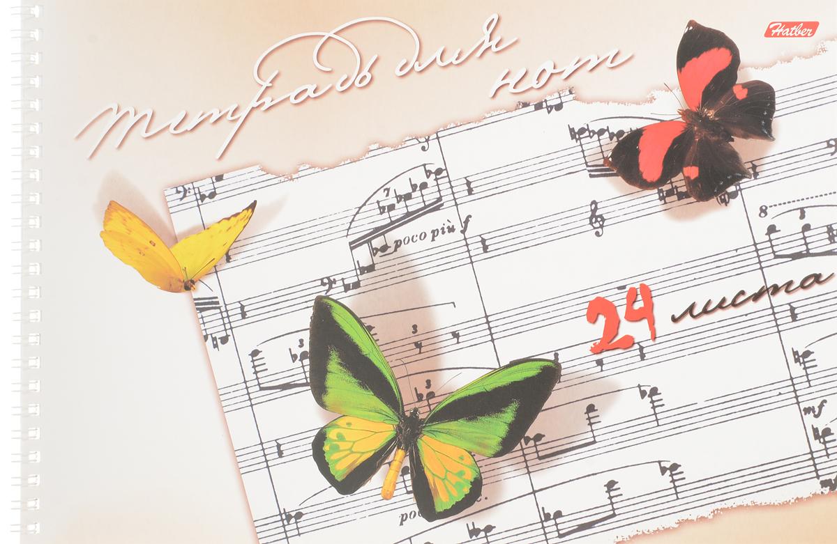 цены Hatber Тетрадь для Нот Бабочки 24 листа