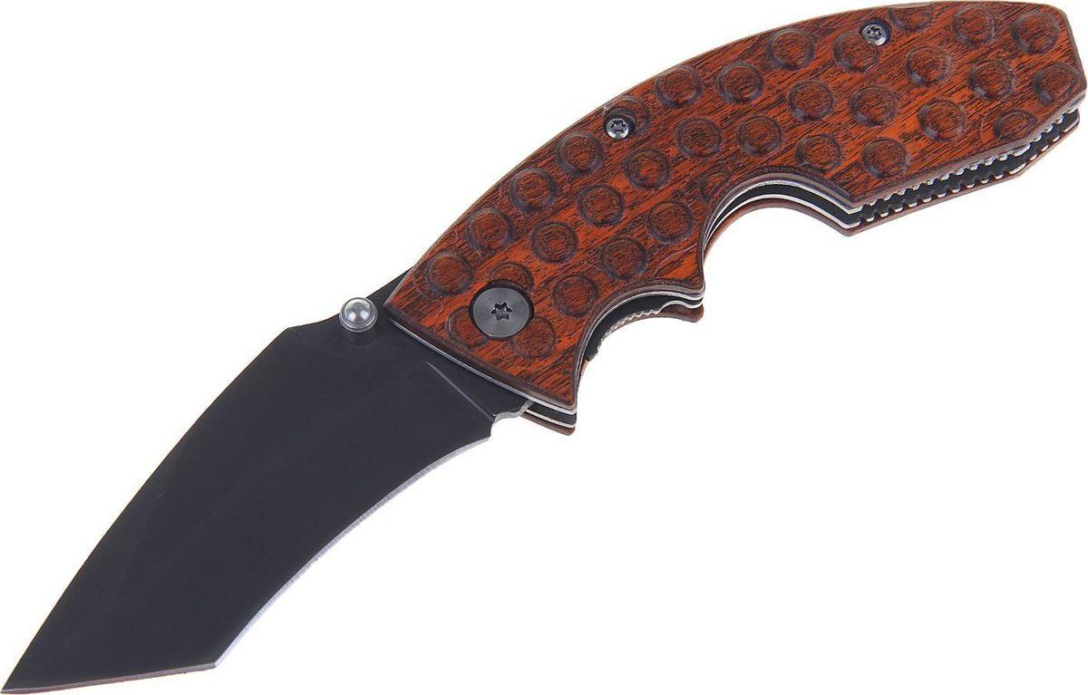 Нож перочинный, с фиксатором, 16,5 х 3 х 1,5 см. 12189411218941Нож перочинный складной с фиксатором и пластиковой ручкой сделан из высококачественной стали, его механические части просты и не требуют обслуживания. Вы сможете привести нож из сложенного положения в рабочее за долю секунды. Острый клинок станет незаменимым инструментом в быту и на отдыхе.Как ухаживать за ножом:Удалите консервационную смазку, если она есть. Подойдут WD-40, растворители масла и грязи для велоцепей.Вытрите насухо и смажьте клинок. Заливать нож маслом необязательно, достаточно протереть его тряпкой с небольшим количеством растительного масла.Появившиеся веснушки ржавчины можно просто заполировать. Вам понадобится средство с абразивом для царапин, сукно и паста для тонкой полировки.Шарнир можно мыть водой или тем же WD-40. Главное — хорошо просушить подвижную часть феном и легко его смазать.Помните: хорошо вымытый после использования нож служит годами, не имеет резкого запаха и не ломается.