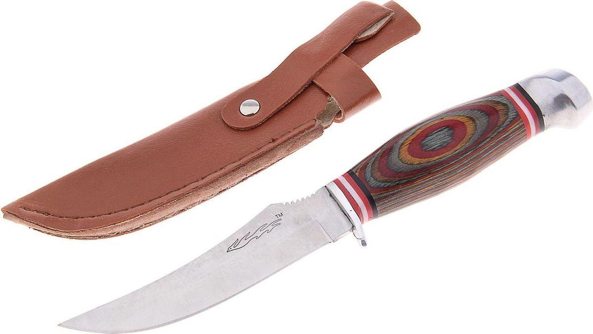 Нож туристический, с чехлом, 21 см. 743840743840Нож выполнен из качественной стали. Он имеет удобную деревянную рукоять и форму, приспособленную под решение нужной задачи. Он никогда не доставит проблем, будет лёгок в заточке и использовании.Нож практически не подвержен износу и способен служить годами. Такой инструмент будет вашим постоянным спутником во время охоты или рыбалки.В комплекте чехол.Как ухаживать за ножом:Удалите консервационную смазку, если она есть. Подойдут WD-40, растворители масла и грязи для велоцепей.Вытрите насухо и смажьте клинок. Заливать нож маслом необязательно, достаточно протереть его тряпкой с небольшим количеством растительного масла.Появившиеся веснушки ржавчины можно просто заполировать. Вам понадобится средство с абразивом для царапин, сукно и паста для тонкой полировки.Помните: хорошо вымытый после использования нож служит годами, не имеет резкого запаха и не ломается.