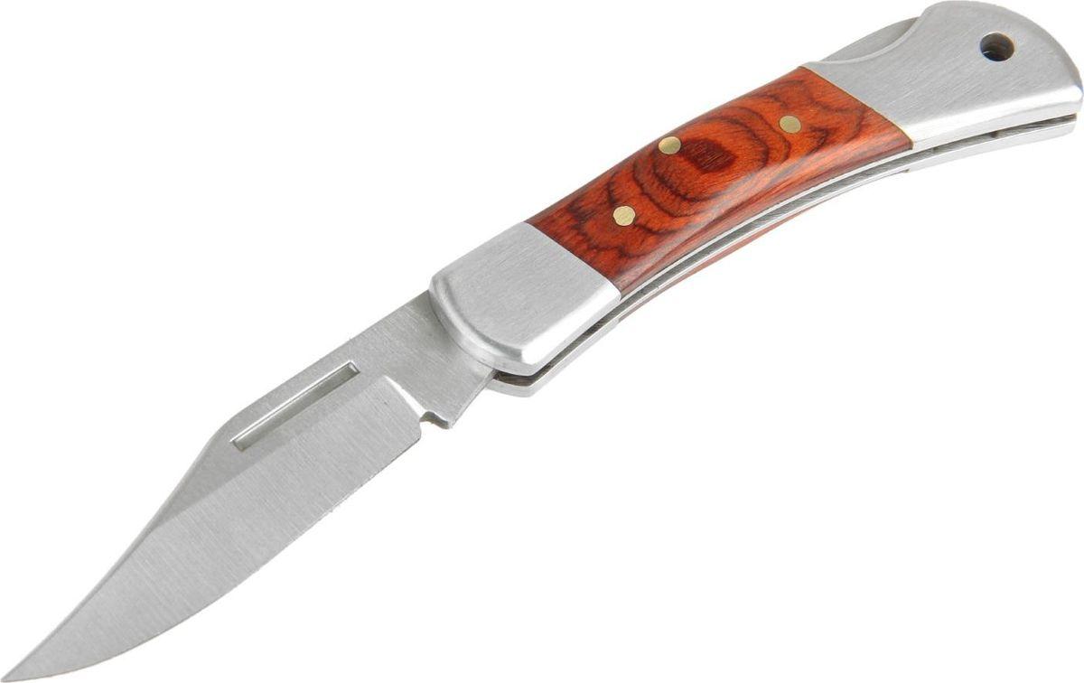 Нож перочинный Buck, длина клинка 8,5 см. 743903743903Многие мужчины вместо банальных безделушек предпочитают получить в подарок атрибут, воплощающий их силу, мужество и отвагу. В этом случае оригинальным и необычном подарком может стать нож.Такой клинок будет отражением личностных качеств своего обладателя и незаменимым помощником на охоте, рыбалке или в быту.