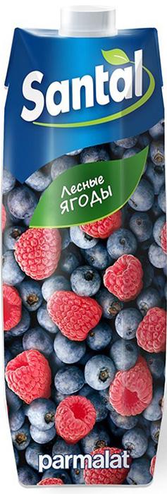 Santal Напиток Лесные ягоды, 1 л напиток mychoice nutrition my fitness l carnitine 2700 shot лесные ягоды 9 x 60 мл