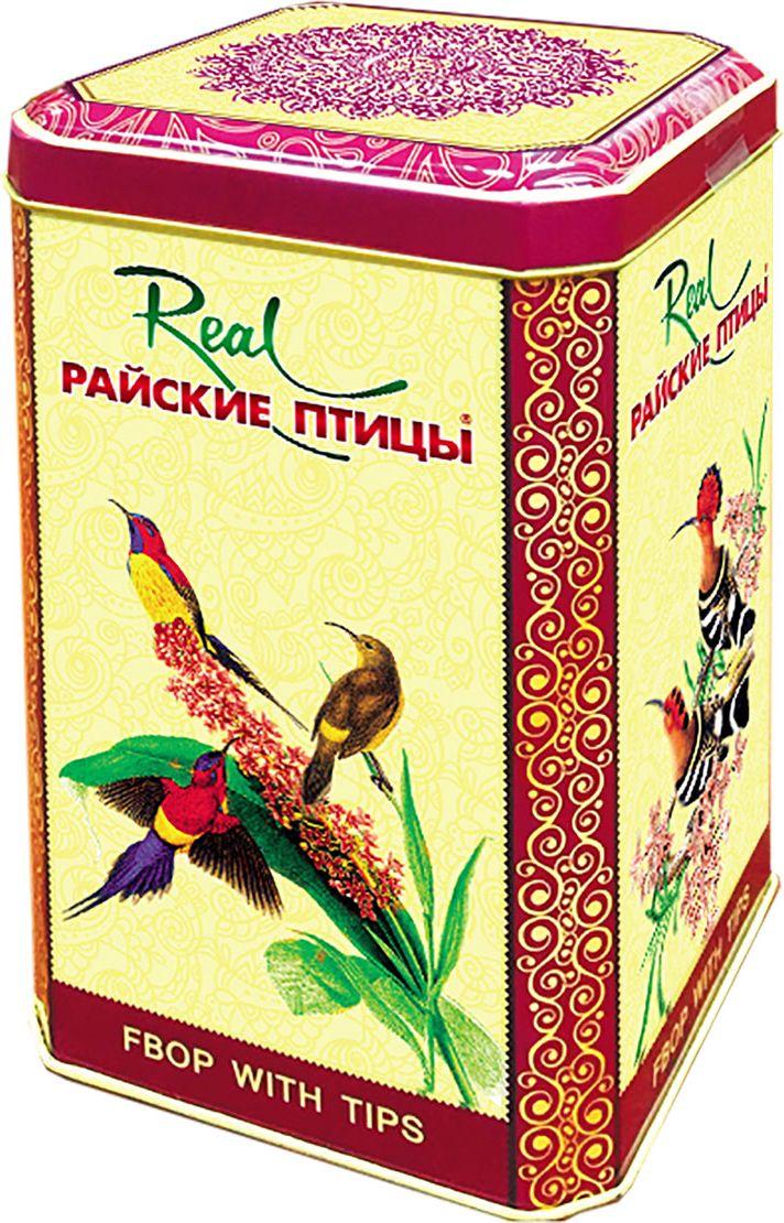 Real Райские птицы листовой черный чай с типсами, 200 г212Чай чёрный байховый Райские птицыО.П.А.крупный лист.Цейлонский чай, собран в высокогорьях Шри-Ланки. Чай без добавок ферментированный (стандарт Orange Pekoe категории А).Всё о чае: сорта, факты, советы по выбору и употреблению. Статья OZON Гид