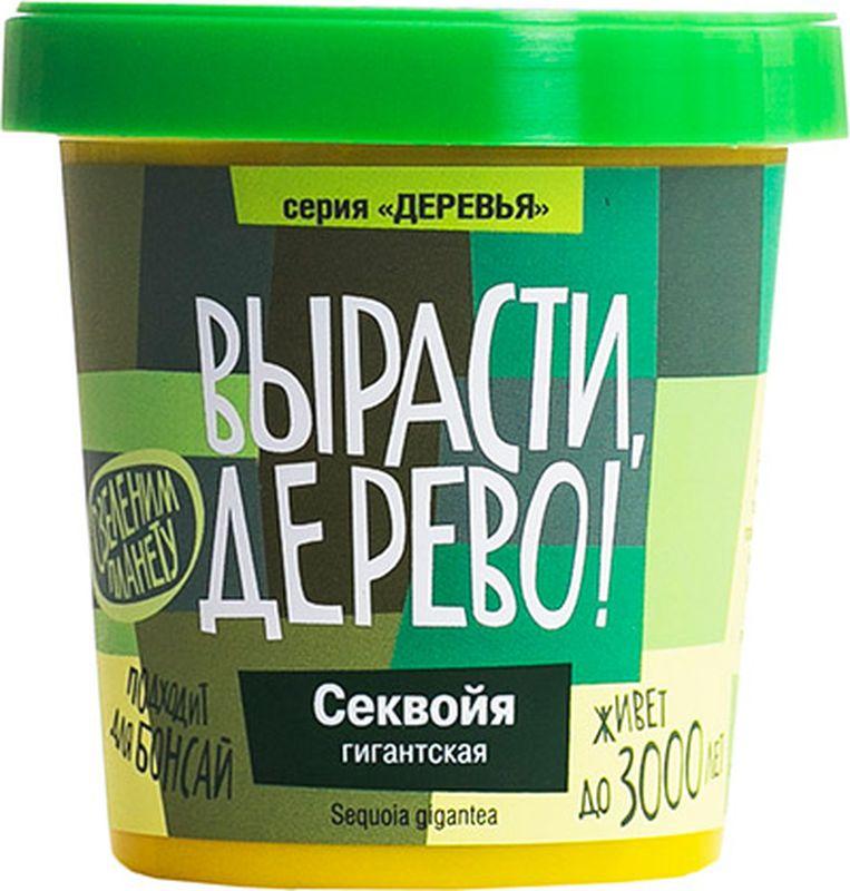 Набор для выращивания растений Вырасти, Дерево! Деревья. Секвойяzk-046Состав:• Пластиковый горшок с крышкой объемом 0,5 литра. • Крышка - поддон для избытка влаги• Семена• Плодородный грунт (PH=6), его хватит на первые 1-2 года• Агроперлит для стратификации семян• Керамзит для дренажаИнструкция1. Поместите семена на крышку - поддон и замочите их водой комнатной температуры на 3 дня, меняйте воду 1 раз в сутки.2. Семенам кедра необходима стратификация 2-3 месяца (хранение семян при температуре +3 - +5 °С) для прерывания их покоя (имитация зимы). Для этого добавьте в перлит воды столько, чтобы она полностью впиталась. Слегка сжав пакет в руке, переверните его и слейте лишнюю воду. Поместите семена кедра в пакет с влажным перлитом и перемешайте.3. Полностью закройте пакет и уберите в холодильник на нижнюю полку на 1-2 месяца. 4. Пересыпьте керамзит на дно пластикового горшка, а сверху насыпьте плодородный грунт, оставив в пакете небольшое количество земли.5. Поставьте горшок на крышку-поддон. Избыток воды при поливе через дренажные отверстия в горшке будет скапливаться на крышке.6. Обильно полейте землю водой комнатной температуры.7. Равномерно распределите семена (можно вместе с перлитом) по поверхности грунта. Очень важно не повредить корешки, если ваши семена уже проклюнулись.8. Присыпьте семена кедра слоем плодородного грунта (5-10 мм).9. Обильно полейте водой комнатной температуры и накройте прозрачным полиэтиленом, проветривая 1 раз в день.10. Постоянно поддерживайте плодородный грунт во влажном состоянии (полив 2-4 раза в неделю). В период прорастания семян кедра лучше использовать пульверизатор.11. Выберете хорошо освещенное солнцем место для вашего питомца. Идеально подойдет подоконник не с южной стороны, чтобы исключить длительное прямое попадание солнечных лучей. Оптимальный температурный режим 18-25 °С.12. Наберитесь терпения, всходы появятся в течение 14-60 дней. После появления всходов снимите полиэтилен.13. Через 1-2 года, не более, окрепшее растение пос