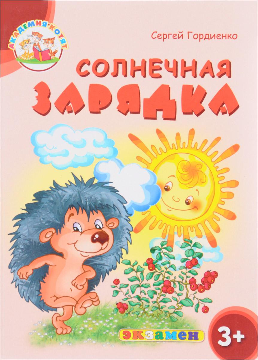 Сергей Гордиенко Солнечная зарядка