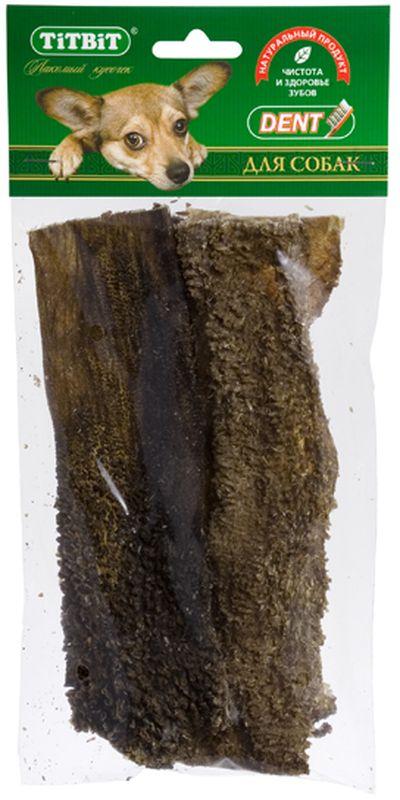 Лакомство Titbit Желудок говяжий, для собак0245Лакомство Titbit - высушенные пластины говяжьего рубца. Упаковка содержит 5-6 пластин длиной 19 см. Рубец говяжий представляет собой часть желудка КРС, точнее - первый из его преджелудков, в котором содержится полезная микрофлора. Ворсинки неочищенного сушеного рубца сохраняют на себе ферменты и витамины группы В, вырабатываемые его микрофлорой при жизни животного. Содержат низкокалорийный, легкоусвояемый белок. Благодаря особой технологии сушки сохраняется до 60% процентов полезных веществ. Рубец говяжий способствует улучшению пищеварения и устранению дисбактериоза.Тайная жизнь домашних животных: чем занять собаку, пока вы на работе. Статья OZON Гид
