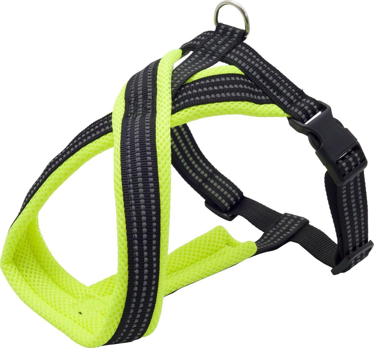 Шлейка для собак Каскад, цвет: зеленый, 1,5 х 26 х 34-45 см01215016-05Шлейка с мягкой подкладкой не вытирает и не сдавливает шерсть собаки. Надежная х-образная конструкция шлейки правильно распределяет нагрузку на спину собаки на прогулке. Яркий цвет шлейки сделает собаку более заметной. Объем груди регулируется с помощью пластикового бегунка.