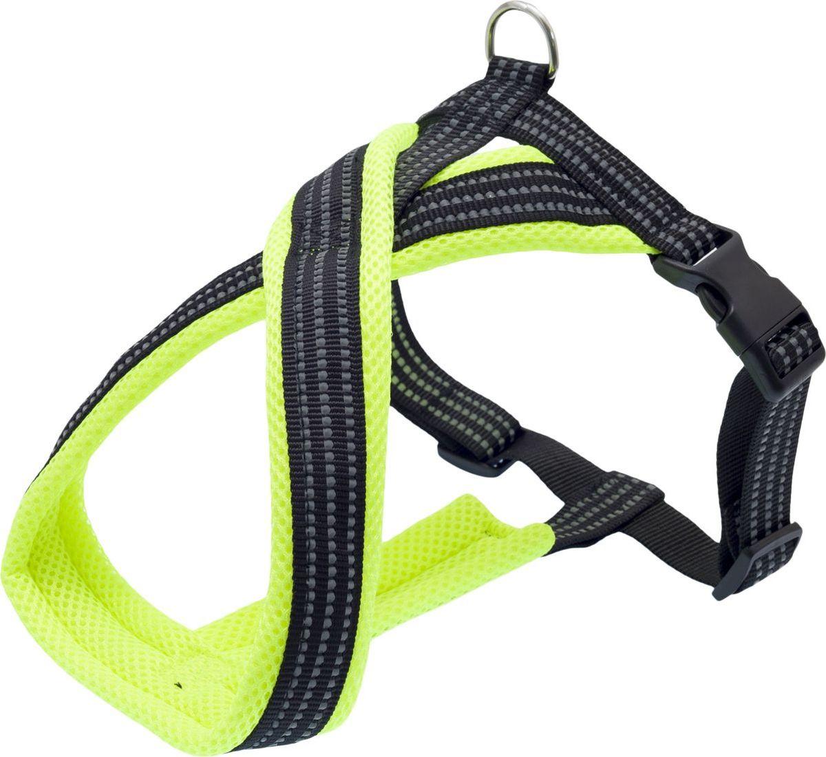 Шлейка для собак Каскад, цвет: зеленый, 2,5 х 50 х 60-70 см01225016-05Шлейка с мягкой подкладкой не вытирает и не сдавливает шерсть собаки. Надежная х-образная конструкция шлейки правильно распределяет нагрузку на спину собаки на прогулке. Яркий цвет шлейки сделает собаку более заметной. Объем груди регулируется с помощью пластикового бегунка.