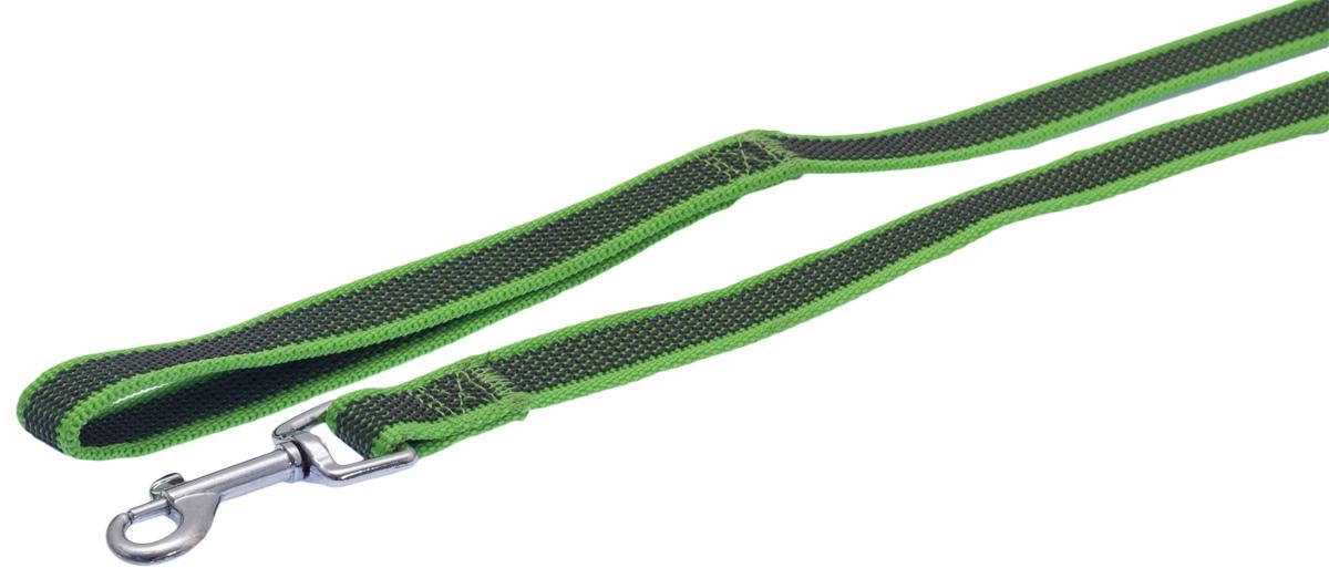 Поводок для собак Каскад, цвет: черный, зеленый, ширина 2 см, длина 3 м19020003-05Двухсторонний поводок для собак Каскад, изготовленный из нейлона, снабжен металлическим карабином. Для удобства фиксации в руке на поводке предусмотрена петля. Изделие отличается не только исключительной надежностью и удобством, но и привлекательным дизайном. Поводок - необходимый аксессуар для собаки. Ведь в опасных ситуациях именно он способен спасти жизнь вашему любимому питомцу. Иногда нужно ограничивать свободу своего четвероногого друга, чтобы защитить его или себя от неприятностей на прогулке. Длина поводка: 3 м. Ширина поводка: 2 см.