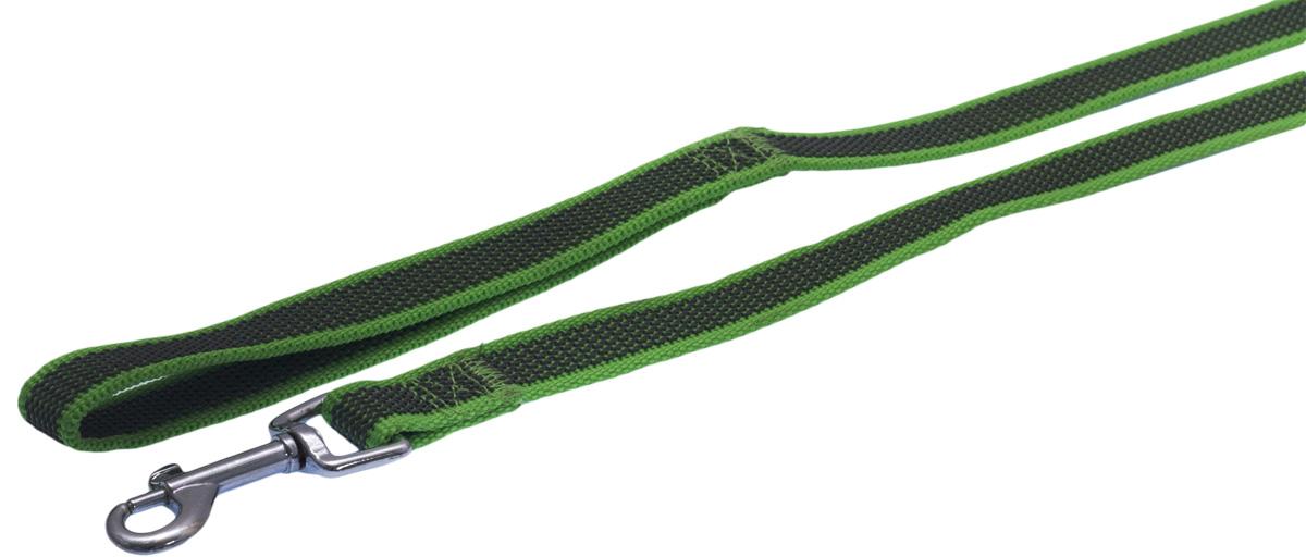 Поводок для собак Каскад, цвет: зеленый, ширина 2 см, длина 5 м19020005-05