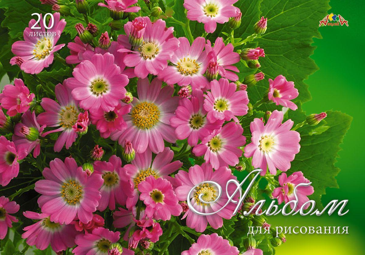 Апплика Альбом для рисования Розовые хризантемы 20 листов
