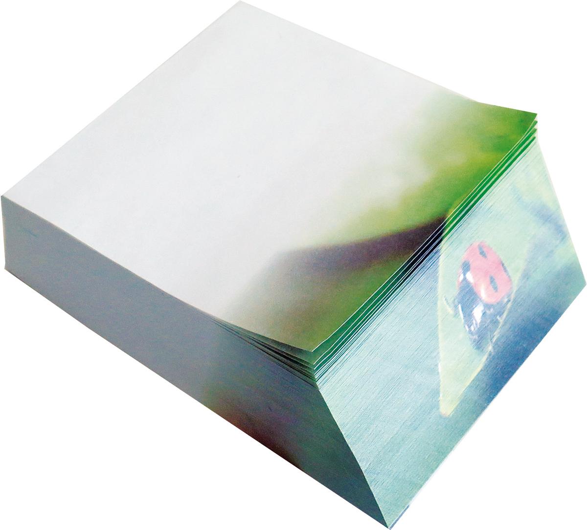 Фолиант Блок для записей Божья коровка 9 х 11 см 300 листовБКД-300С/18Блок бумаги Фолиант Божья коровка идеально подходит для быстрой фиксации информации. Блок бумаги выполнен с декоративным срезом, с проявлением отпечатанного изображения на торце.Блок бумаги изготовлен на картонной подложке, листы проклеены по торцу. Благодаря специальной проклейки, листы блока не рассыпаются. Порядок на столе гарантирован. Печать на листах добавит вам хорошего настроения. Особенности - наличие декоративного среза; листы склеены в блок.