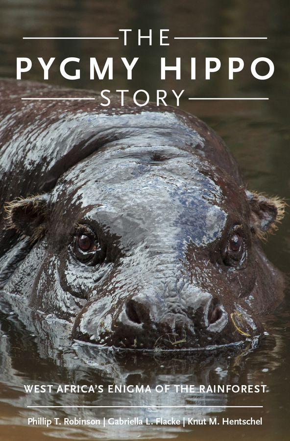 The Pygmy Hippo Story a natural history of vision paper