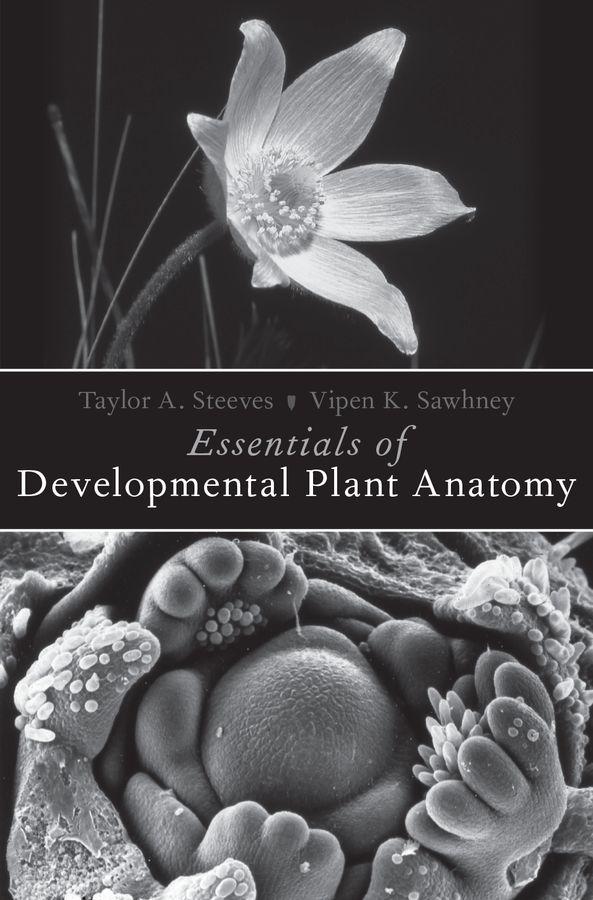 Essentials of Developmental Plant Anatomy max djeen september anatomy of madness