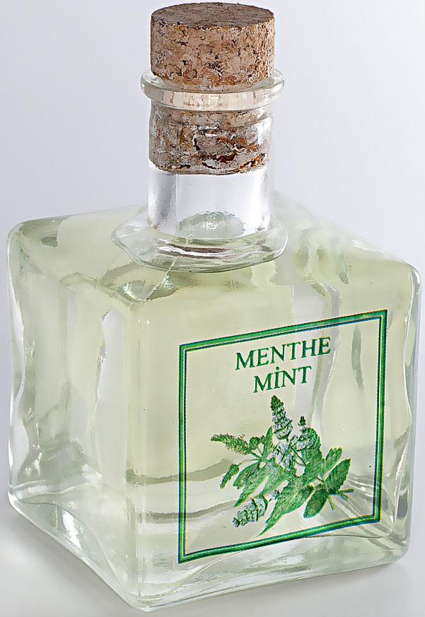 Диффузор ароматический Le Blanc Мята, 200 мл2000000003764Ароматический диффузор Le Blanc Мята наполнит дом неповторимым ароматом. Аромат мяты всегда был символом изысканной свежести. Противоречивый, сильный, бодрящий, травяной, этот волшебный запах переносит нас в мир зелёных чащ и непроходимых лесов, где лёжа на ковре из густых трав мы наслаждаемся мятным ароматом. Яркий и бодрящий аромат ассоциируется с запахом цветов после дождя, благоуханием водных кувшинок, ощущением свежести после морского купания, ароматом чистоты, лёгкости и невинности.Диффузор, упакованный в подарочную коробку, будет отличным подарком. В комплект входит емкость с жидкостью в выбранном объеме, тростниковые палочки, картонная коробочка.