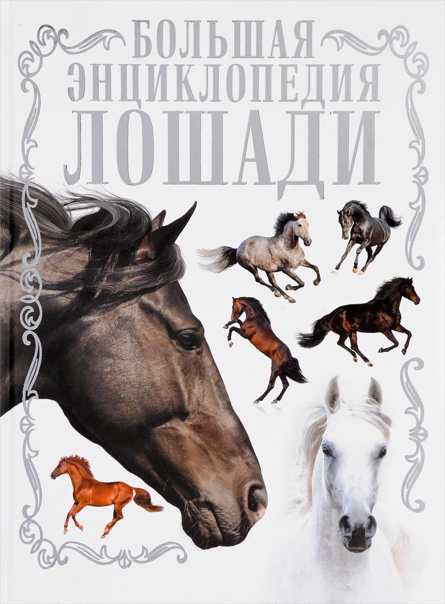 Лошади. Большая энциклопедия.