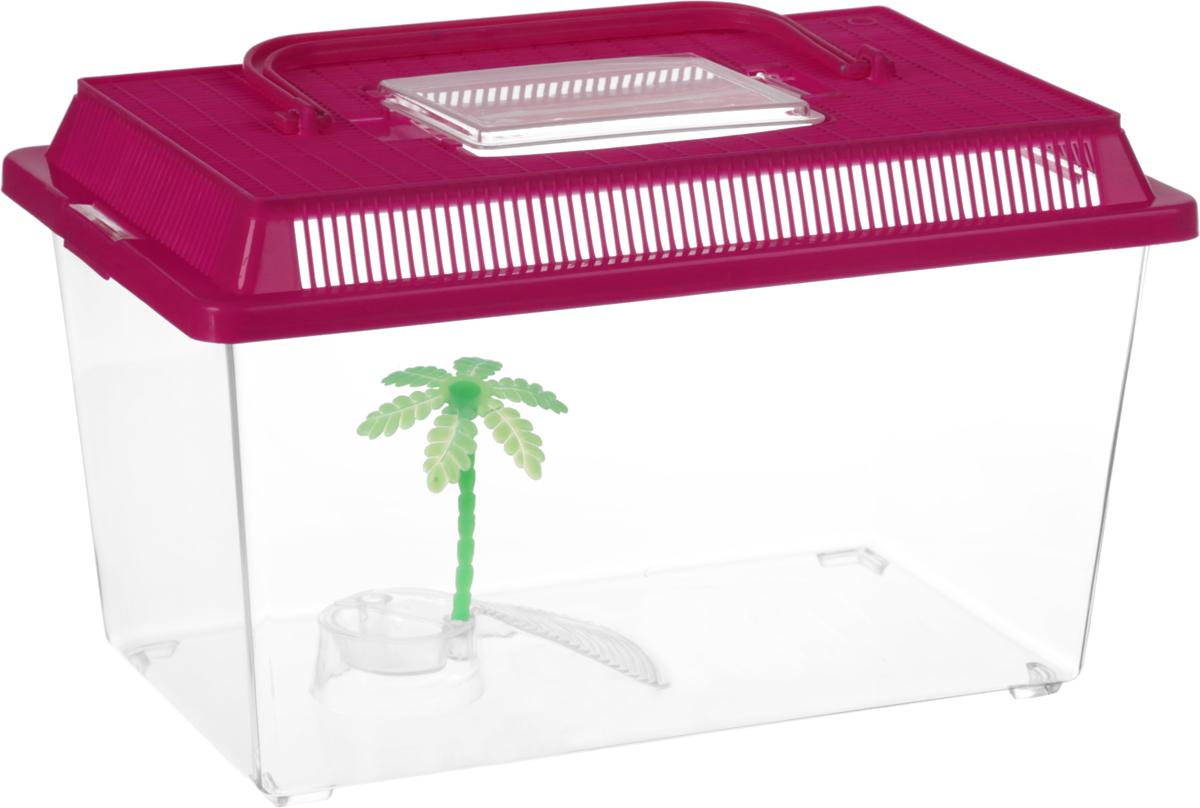 Контейнер-переноска для рептилий Repti-Zoo, цвет: прозрачный, малиновый, 27 х 17 х 16,8 см83615003_прозрачный, малиновыйКонтейнер-переноска для рептилий Repti-Zoo изготовлен из прозрачного пластика. Изделие имеет цветную крышку, которая плотно фиксируется с помощью защелок. Мелкие отверстия обеспечивают вентиляцию. На крышке имеется прозрачное окошко для легкого доступа внутрь. Также в контейнере предусмотрена встроенная миска. Для удобной переноски имеется ручка. Контейнер идеально подходит для транспортировки небольших рептилий, например, черепах, ящериц.