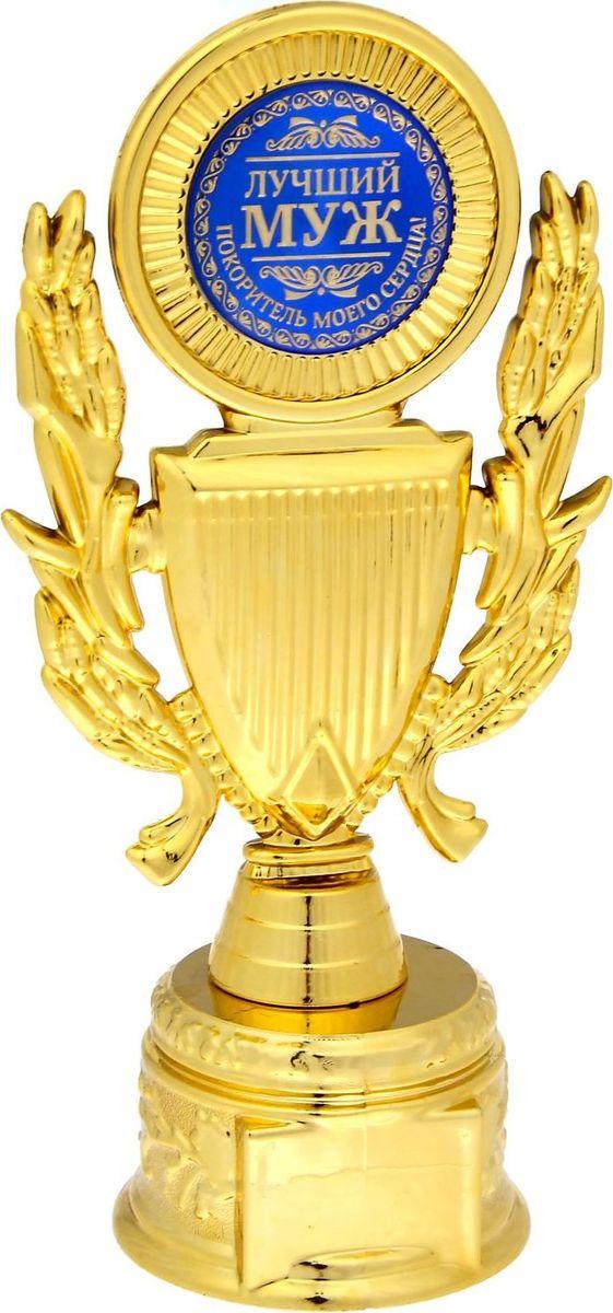 Кубок сувенирный Лучший муж. 11523371152337Кубок Лучший муж — неповторимый подарок для каждого получателя! Это настоящая почётная награда: лавры, щит и яркая бляшка со званием! Прозрачная пластиковая коробка с тиснением прекрасно дополняет и украшает кубок, благодаря ей вы сможете рассмотреть кубок со всех сторон.