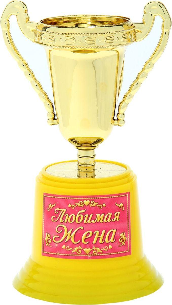 Кубок сувенирный Любимая жена. 758150758150Кубок – оригинальный подарок для любого праздника. Станет отличным украшением и поможет создать вам невероятную церемонию праздничного поздравления или вручения почетной награды. Наградной кубок, символ почета и блистательных достижений обязательно порадует Ваших близких смелым ярким дизайном и оригинальным исполнением. Кубок Любимая жена в классическом для награды стиле изготовлен из легкого пластика, декорирован яркой наклейкой с титулом и пожеланием. Яркая фирменная упаковка отлично дополняет оригинальную награду. Поздравляйте и удивляйте!
