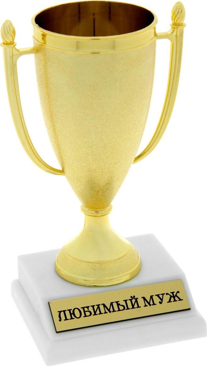 Кубок сувенирный Любимый муж. 843520843520Кубок, как символ победы, украсит интерьер дома или займёт почетное место в рабочем кабинете. Награда будет радовать своего будущего владельца долгое время и привлекать внимание гостей. На подставке находится шильдик с номинацией, изготовленный из металла с акриловым покрытием, что предотвращает его потускнение. Статуэтку дополняет красивая подарочная упаковка, которая придает подарку презентабельный вид.