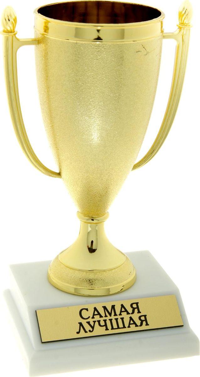 Кубок сувенирный Самая лучшая. 843527843527Кубок, как символ победы, украсит интерьер дома или займёт почетное место в рабочем кабинете. Награда будет радовать своего будущего владельца долгое время и привлекать внимание гостей. На подставке находится шильдик с номинацией, изготовленный из металла с акриловым покрытием, что предотвращает его потускнение. Статуэтку дополняет красивая подарочная упаковка, которая придает подарку презентабельный вид.