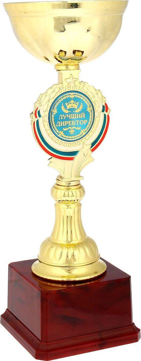 """Кубок """"Лучший директор"""" непременно порадует получателя и станет отличным напоминанием о  проведённом вместе времени. Товар дополнен цветной металлической бляшкой с  наименованием номинации, за которую он вручается. На обороте вы найдёте самые тёплые слова и пожелания для  получателя."""