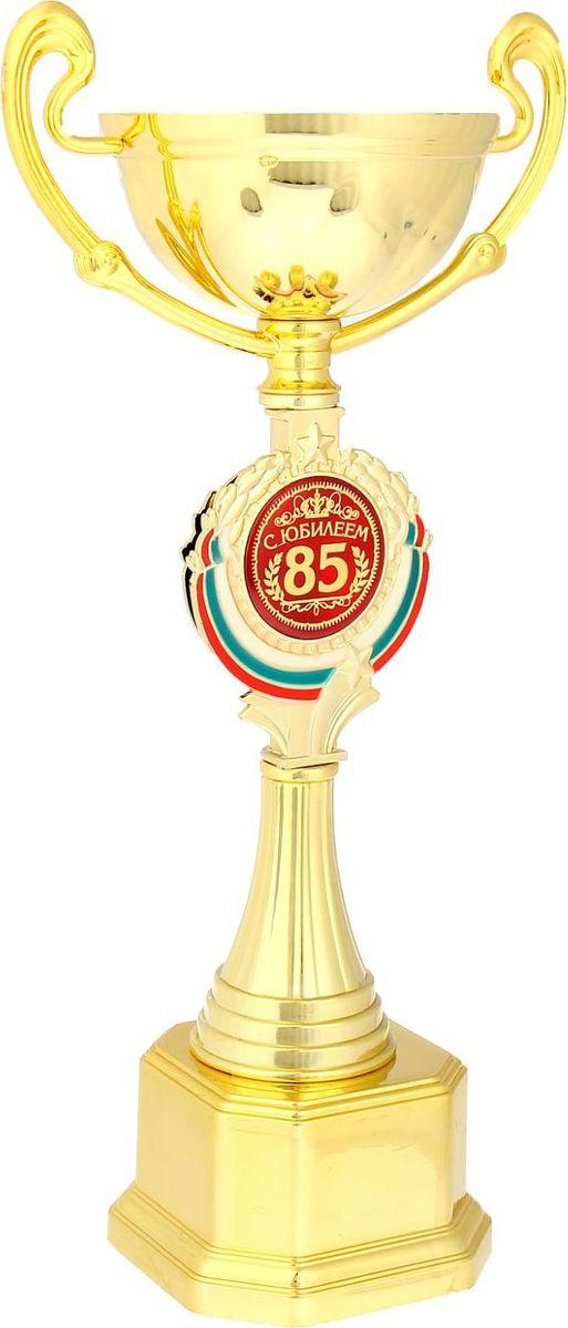 Кубок сувенирный С Юбилеем 85. 844055844055Кубок С Юбилеем 85 станет самой лучшей наградой и подарком, поскольку сочетает в себе качество и интересный дизайн! Уникальный сувенир неповторим по своей форме, второго такого вы не найдёте. Он дополнен цветной бляшкой, изготовленной из металла, с наименованием номинации, за которую вручается. Упаковка для кубка из гофрокартона надёжно защищает его от повреждения при транспортировке и служит отличным вариантом подарочной упаковки. На обороте коробки получатель найдёт добрые слова и тёплые пожелания.