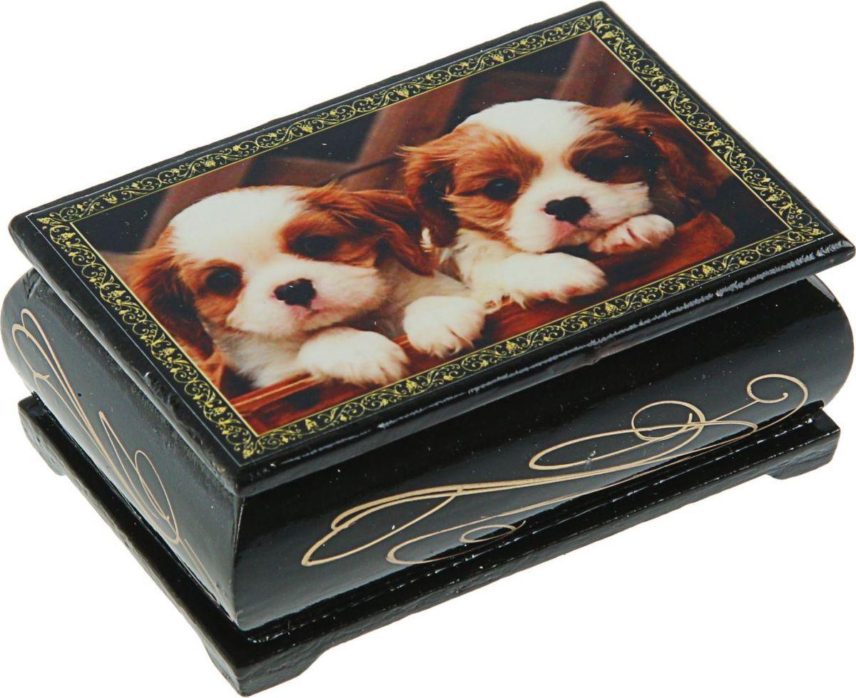 Шкатулка Sima-land Собаки, цвет: черный, 6 см х 9 см. 24719602454268Шкатулка — это небольшой сувенир, а также оригинальная упаковка подарка. Она дополнит интерьер спальни, гостиной или прихожей. Изделие предназначено для хранения украшений: колец, браслетов, часов, цепочек, колье, сережек и прочих предметов.