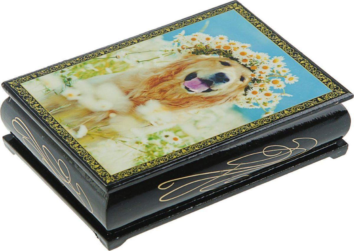 Шкатулка Sima-land Собаки, цвет: голубой, 10 см х 14 см. 24542742454272Шкатулка — это небольшой сувенир, а также оригинальная упаковка подарка. Она дополнит интерьер спальни, гостиной или прихожей. Изделие предназначено для хранения украшений: колец, браслетов, часов, цепочек, колье, сережек и прочих предметов.