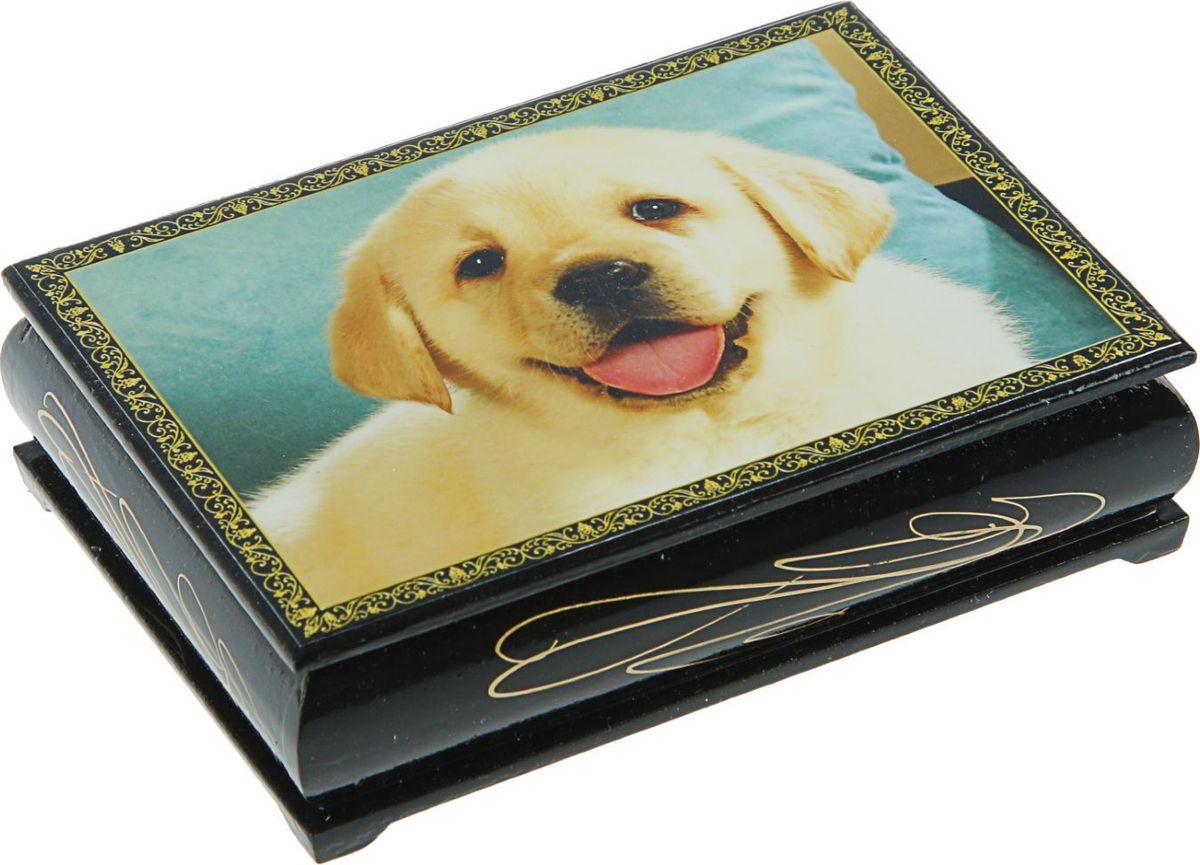 Шкатулка Sima-land Собаки, цвет: черный, 10 см х 14 см. 24542762454273Шкатулка — это небольшой сувенир, а также оригинальная упаковка подарка. Она дополнит интерьер спальни, гостиной или прихожей. Изделие предназначено для хранения украшений: колец, браслетов, часов, цепочек, колье, сережек и прочих предметов.
