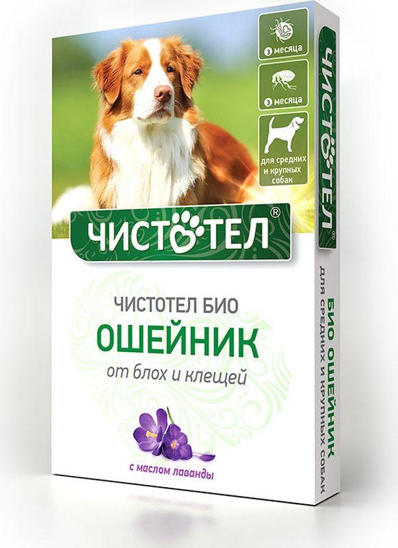 Ошейник Чистотел Био, с лавандой, для средних и крупных собак, от паразитов, 65 см