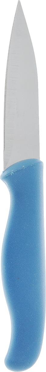 Нож для овощей Доляна Мультиколор, цвет: синий, серый, длина лезвия 8,5 см1102509_синийНож для овощей Доляна Мультиколор изготовлен из высококачественной нержавеющей стали, которая не подвергается коррозии и выдерживает высокие температуры. Ручка выполнена из пластика. Нож идеален для нарезки овощей и фруктов. Изделие предназначено для профессионального и домашнего использования. В нем отлично сбалансированы лезвия и ручка, позволяя резать быстрее и комфортнее. Лезвие ножа не впитывает запахи, оставляя натуральный вкус продуктов.Общая длина ножа: 19 см.