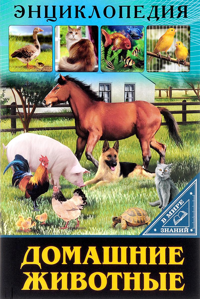 Оксана Балуева Домашние животные