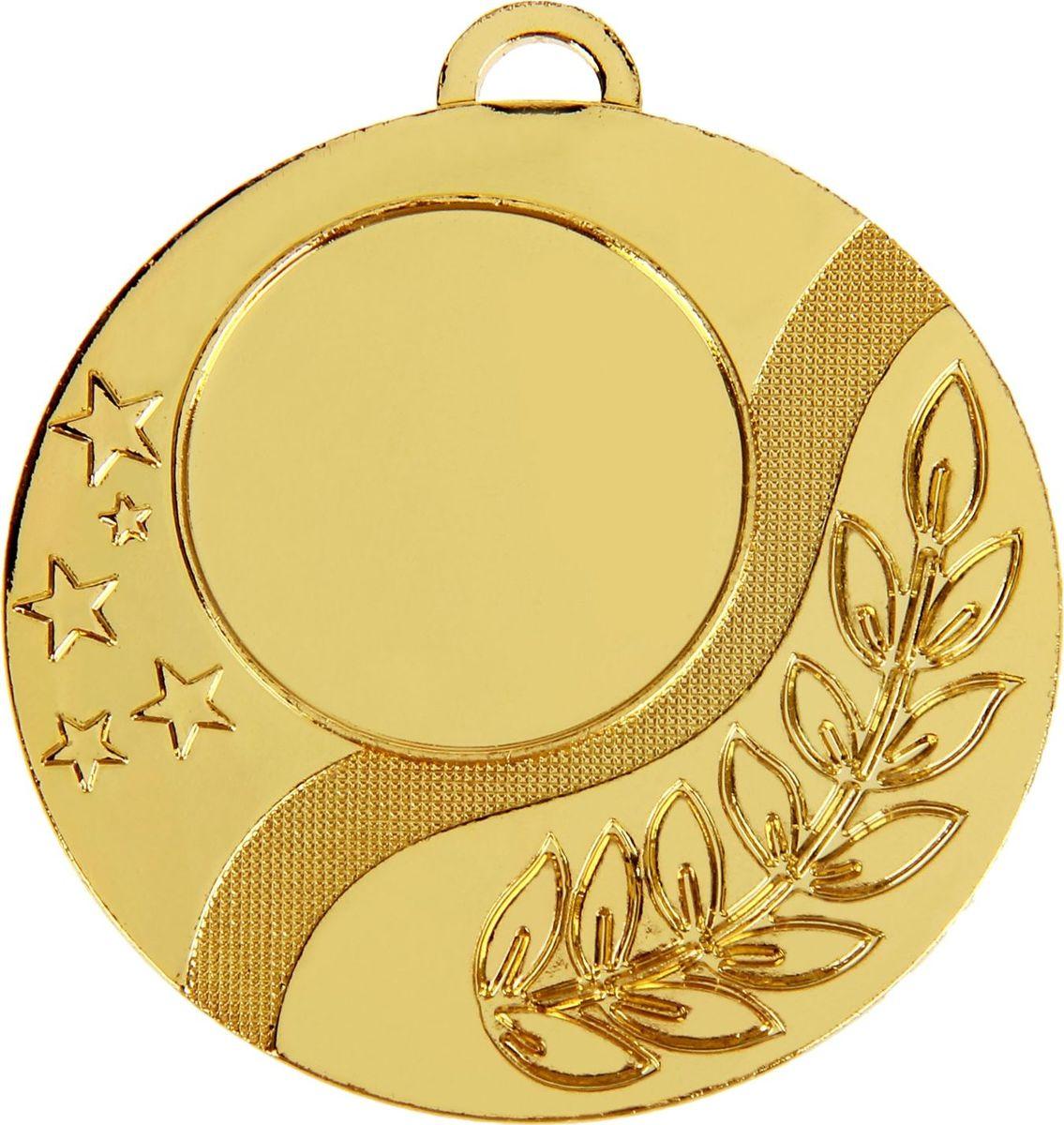 Медаль сувенирная с местом для гравировки, цвет: золотистый, диаметр 5 см. 0191028899Дизайн медали дополнен изображением лавра, ведь со времен греко-римской древности его ветви — символ славы, победы или мира. Эту награду вы сможете дополнить персональной гравировкой или корпоративной символикой. Если вы захотите подчеркнуть важность домашнего или корпоративного спортивного мероприятия, оригинальным и запоминающимся итогом соревнований будет вручение медалей участникам и победителям. Характеристики: Диаметр медали: 5 см Диаметр вкладыша (лицо): 2,5 см Диаметр вкладыша (оборот): 4,5 см.