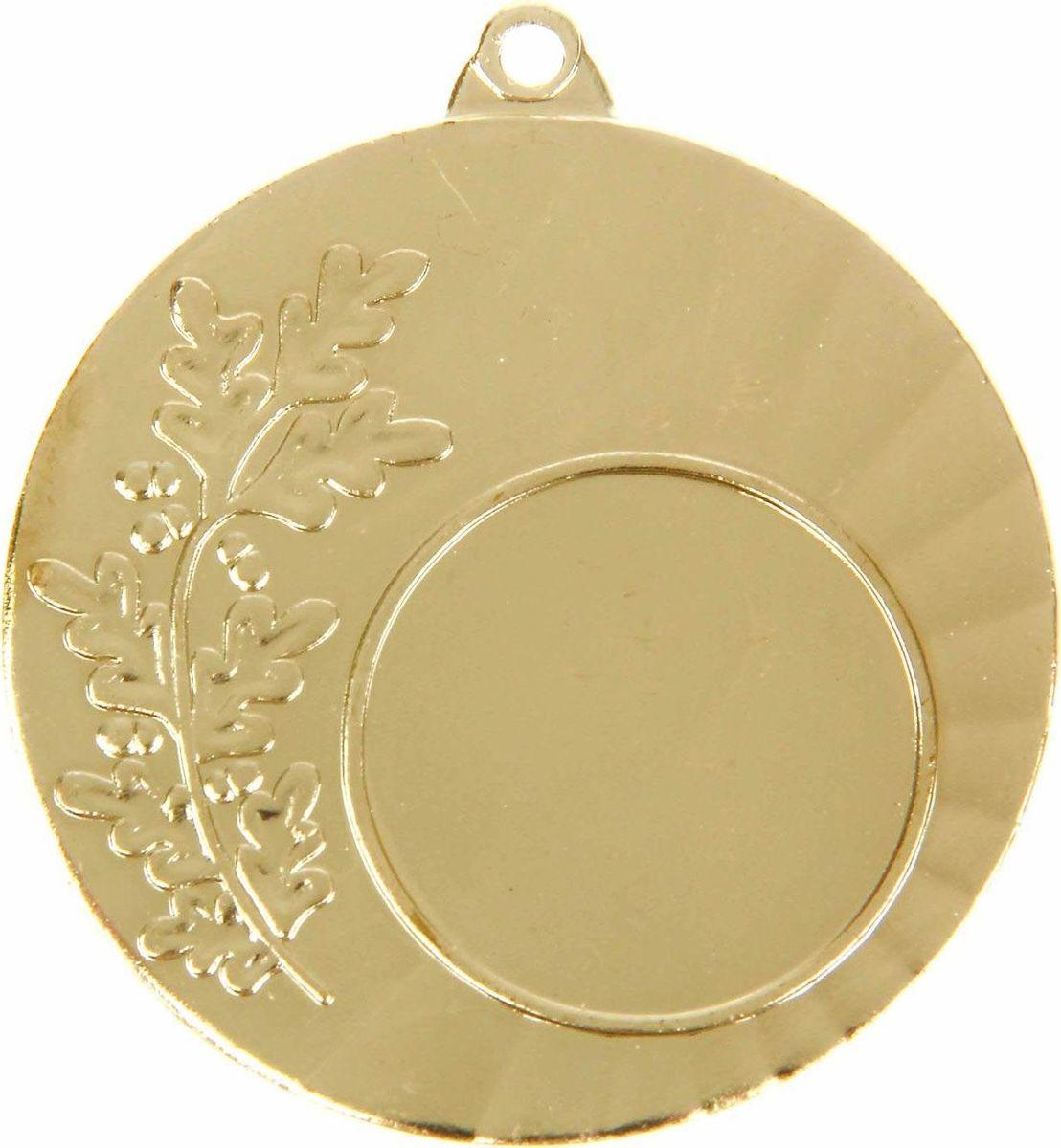 Медаль сувенирная с местом для гравировки, цвет: золотистый, диаметр 4,5 см. 0251108697Медаль — знак отличия, которым награждают самых достойных. Она вручается лишь тем, кто проявил настойчивость и волю к победе. Каждое достижение — это важное событие, которое должно остаться в памяти на долгие годы. Любое спортивное состязание, профессиональное или среди любителей, любое корпоративное мероприятие — отличный повод для того, чтобы отметить лучших из лучших. Характеристики:Диаметр медали: 4,5 см Диаметр вкладыша (лицо): 2,5 см Диаметр вкладыша (оборот): 4 см. Пусть любая победа будет отмечена соответствующей наградой!