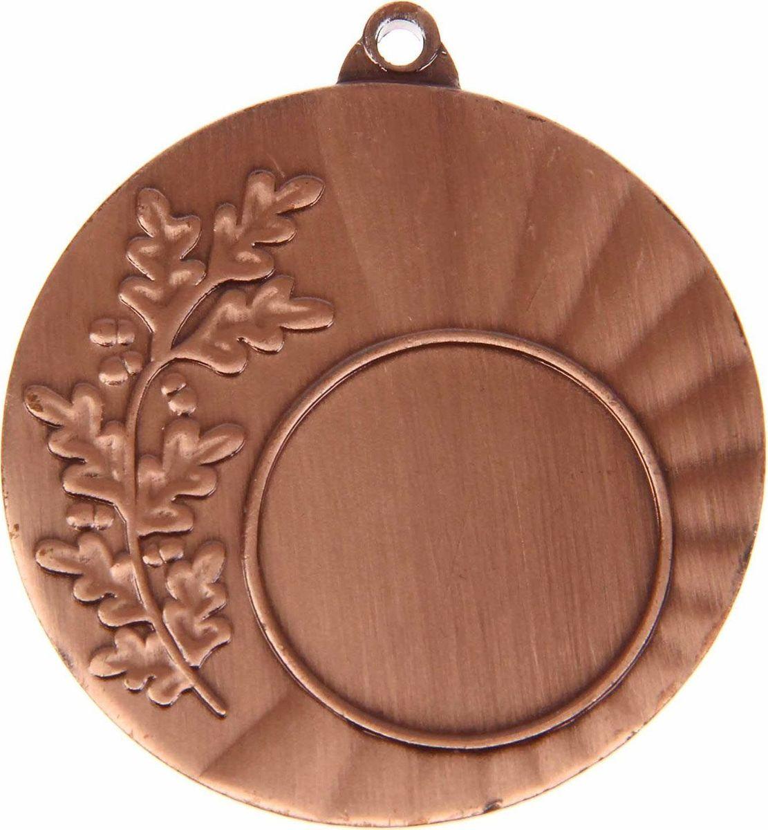 Медаль сувенирная с местом для гравировки, цвет: бронзовый, диаметр 4,5 см. 0251108699Медаль — знак отличия, которым награждают самых достойных. Она вручается лишь тем, кто проявил настойчивость и волю к победе. Каждое достижение — это важное событие, которое должно остаться в памяти на долгие годы. Любое спортивное состязание, профессиональное или среди любителей, любое корпоративное мероприятие — отличный повод для того, чтобы отметить лучших из лучших. Характеристики:Диаметр медали: 4,5 см Диаметр вкладыша (лицо): 2,5 см Диаметр вкладыша (оборот): 4 см. Пусть любая победа будет отмечена соответствующей наградой!