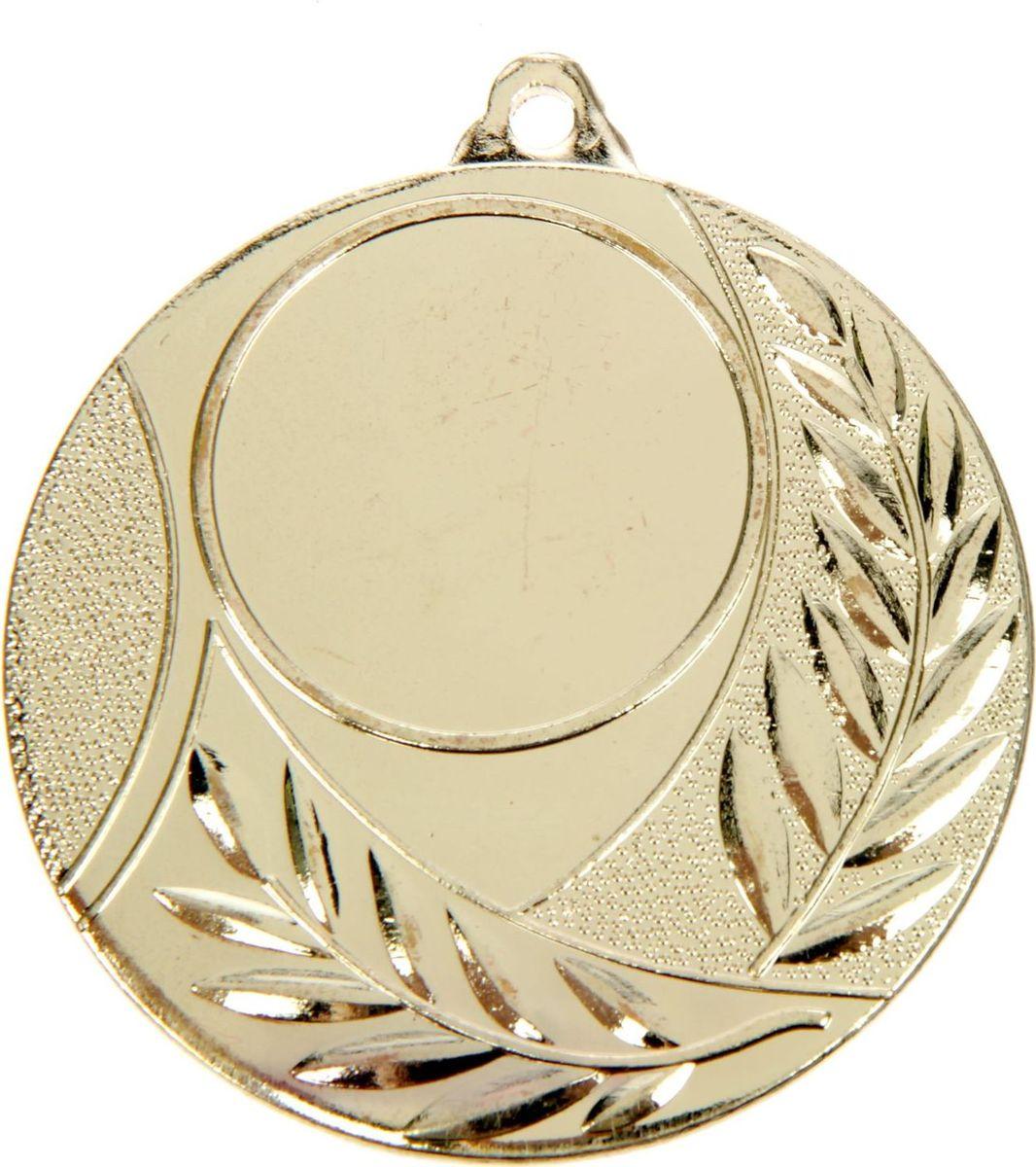 Медаль сувенирная с местом для гравировки, цвет: золотистый, диаметр 5 см. 0461387706Невозможно представить нашу жизнь без праздников! Мы всегда ждём их и предвкушаем, обдумываем, как проведём памятный день, тщательно выбираем подарки и аксессуары, ведь именно они создают и поддерживают торжественный настрой. Это отличный выбор, который привнесёт атмосферу праздника в ваш дом!
