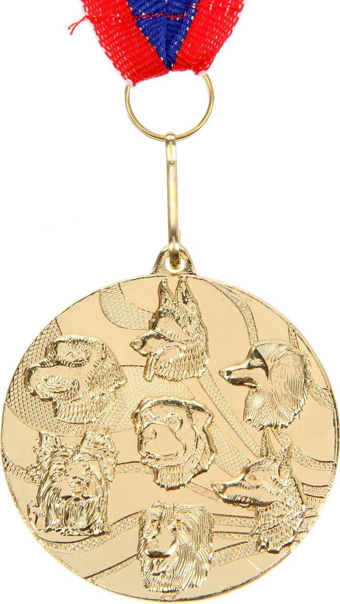 Медаль сувенирная Собака, цвет: золотистый, диаметр 5 см. 0651510656Невозможно представить нашу жизнь без праздников! Мы всегда ждём их и предвкушаем, обдумываем, как проведём памятный день, тщательно выбираем подарки и аксессуары, ведь именно они создают и поддерживают торжественный настрой. Это отличный выбор, который привнесёт атмосферу праздника в ваш дом!