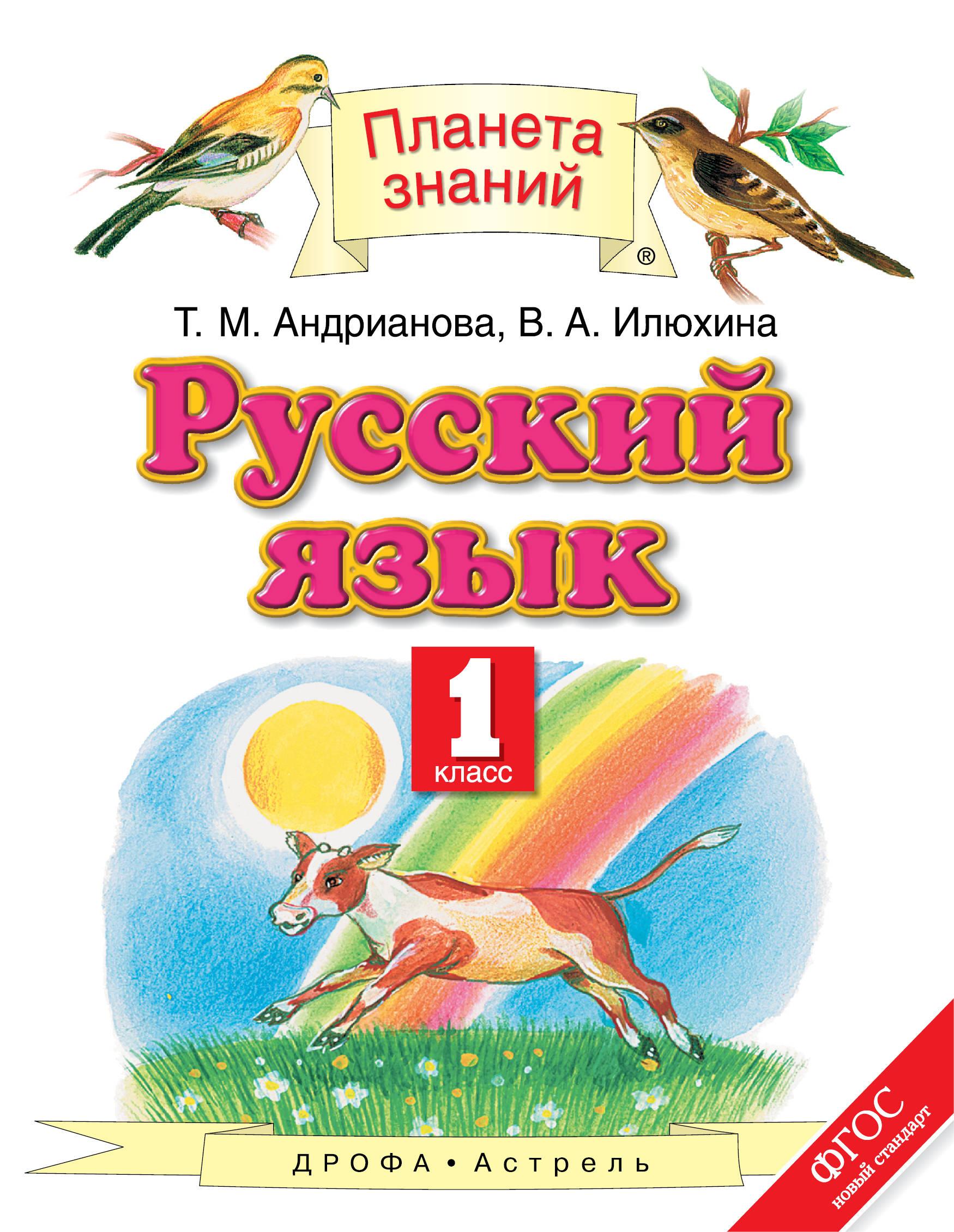 Русский язык. 1 класс, Андрианова Т М