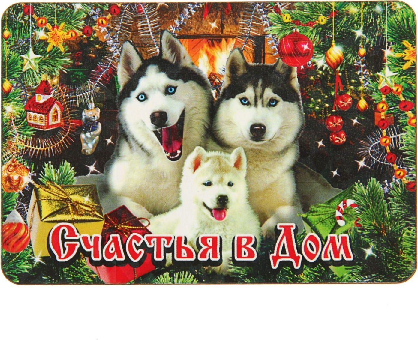 Магнит Sima-land Счастья в дом. Символ года, 9,6 х 6,5 см2448922Порадуйте родных и близких оригинальным сувениром: преподнесите в подарок магнит. С ним даже самый серьёзный человек почувствует себя ребёнком, ожидающим чудо! Создайте праздничное настроение, и оно останется с вами на весь год.