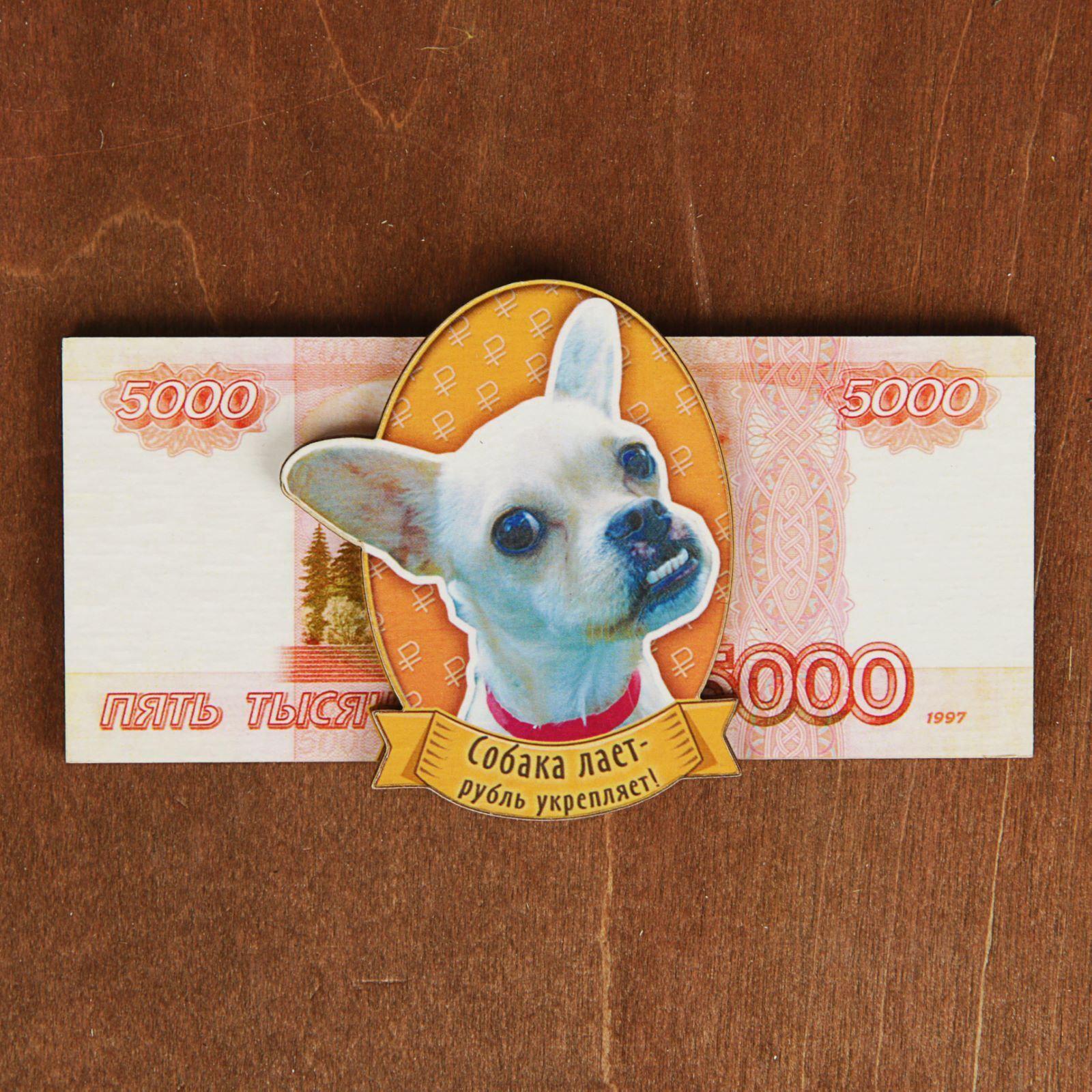 Магнит Sima-land 5000 рублей, 12,5 х 5,5 см2484611Порадуйте родных и близких оригинальным сувениром: преподнесите в подарок магнит. С ним даже самый серьёзный человек почувствует себя ребёнком, ожидающим чудо! Создайте праздничное настроение, и оно останется с вами на весь год.
