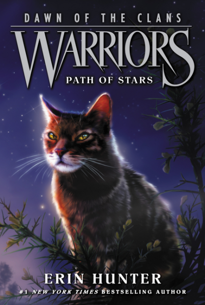 Warriors: Dawn of the Clans №6: Path of Stars
