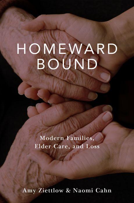 Homeward Bound frank buytendijk dealing with dilemmas where business analytics fall short