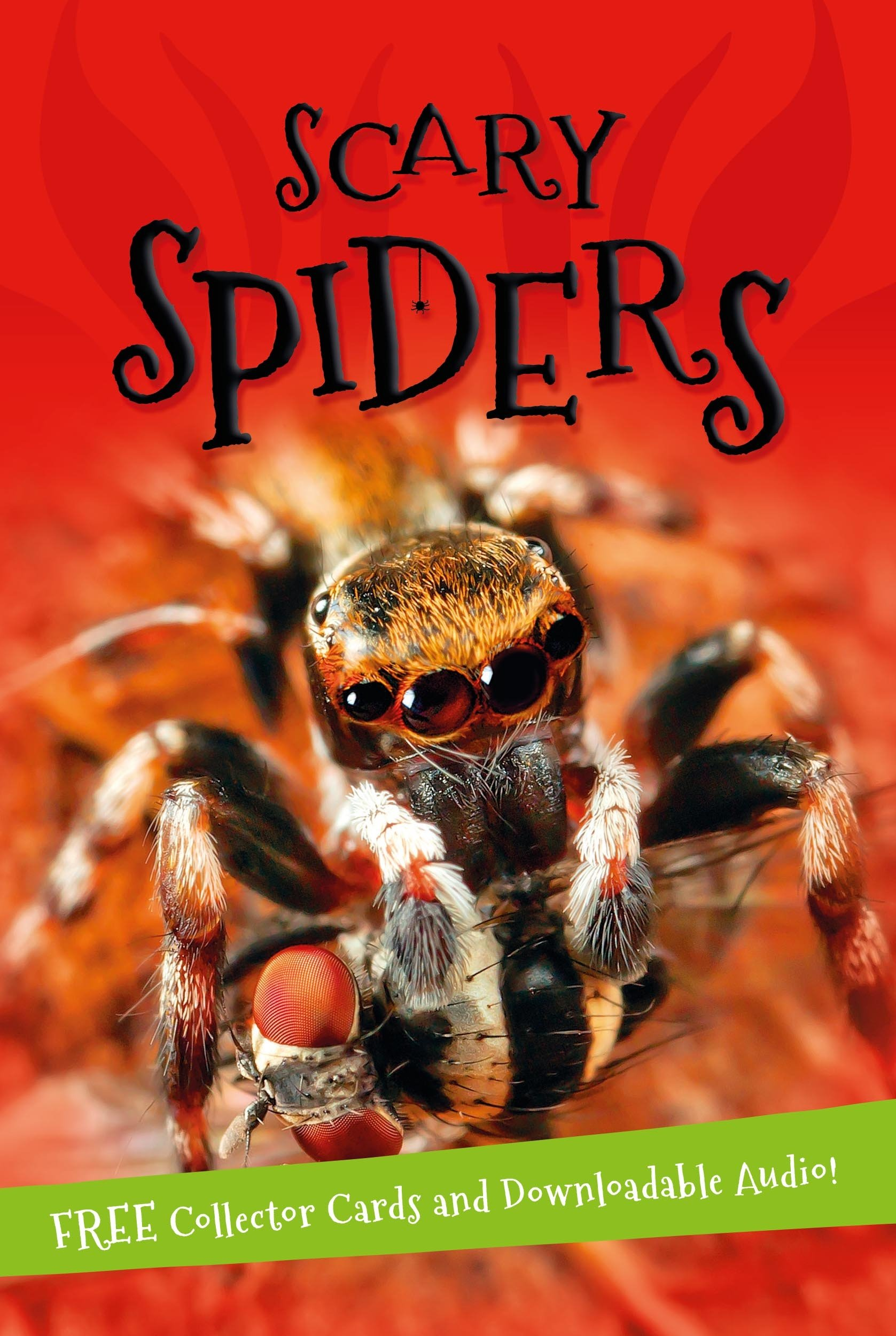 It's all about... Scary Spiders it s all about scary spiders