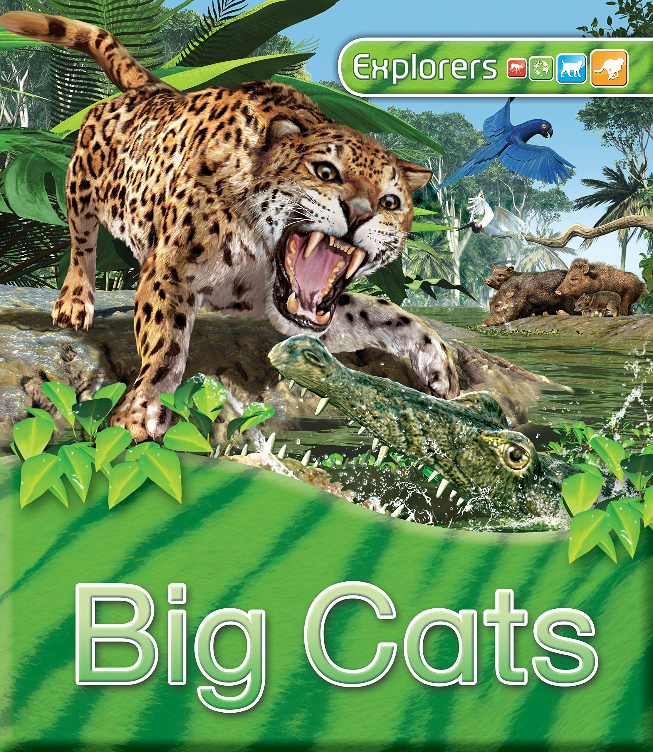 Explorers: Big Cats kenneth rosen d investing in income properties the big six formula for achieving wealth in real estate