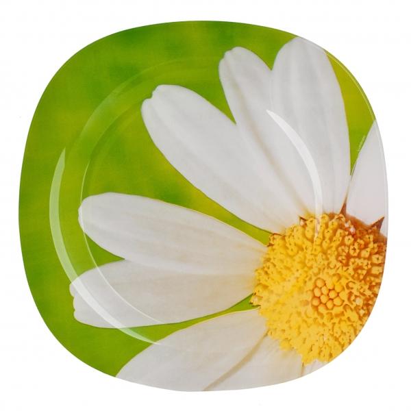 """Тарелка обеденная из серии Luminarc """"Carine Paquerette"""" выполнена из ударопрочного стекла, устойчива к резким перепадам температуры. Сохранит свою яркость и первозданный вид даже после частого использования в посудомоечной машине и СВЧ. Тарелка предназначена для сервировки вторых блюд из птицы, рыбы, мяса или овощей. Современный дизайн и оригинальный цветочный декор сделают тарелку достойным украшением вашего стола."""