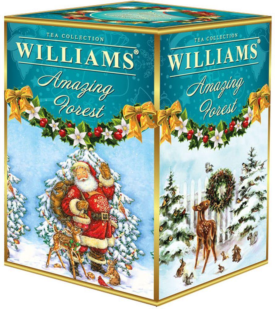 WILLIAMS Amazing forest черный крупнолистовой цейлонский чай с кусочками земляники, 125 г williams kate becoming queen